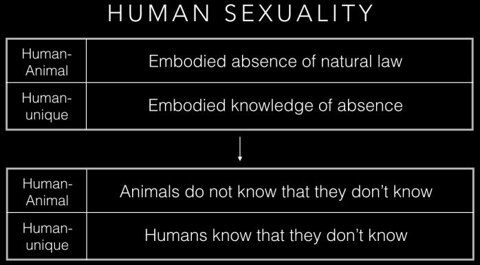human sex